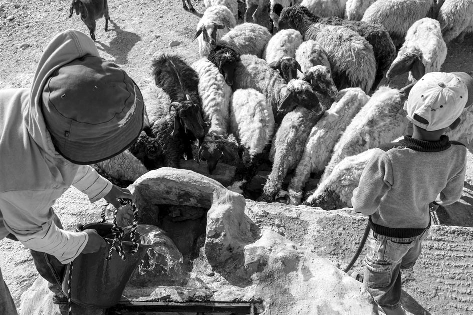 Al Rashayida, sureste de Belén (Cisjordania). Fotografía: Arturas Morozovas.
