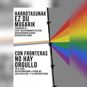 Cartel del día internacional a favor del colectivo LGTB+ y la libertad sexual. Fuente: Coordinadora del 28-J del País Vasco.